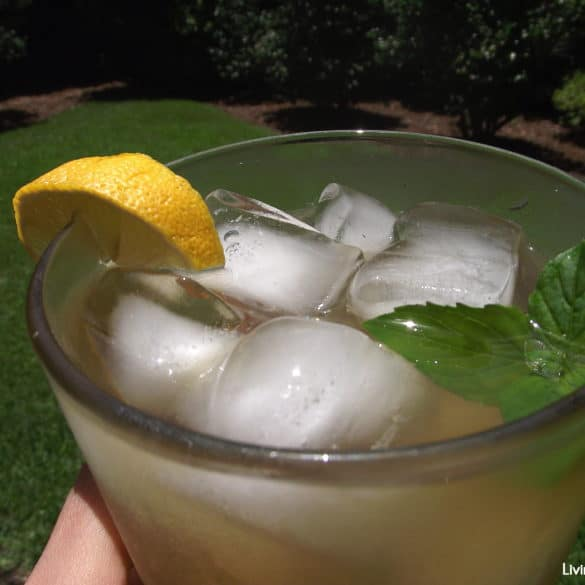 iced antioxidant tea