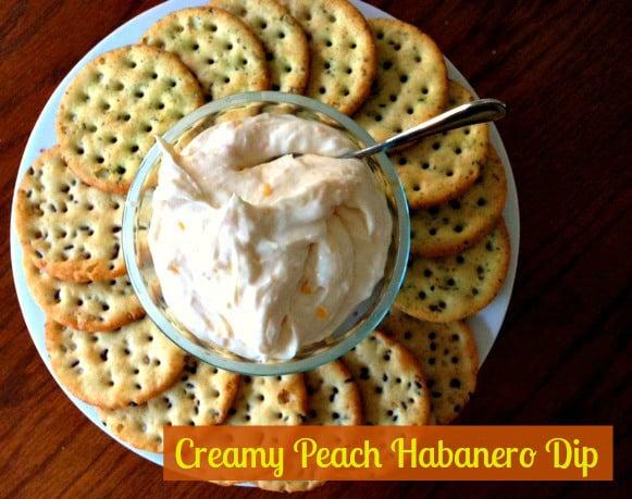 Nutrition Adventures Creamy Peach Habanero Dip