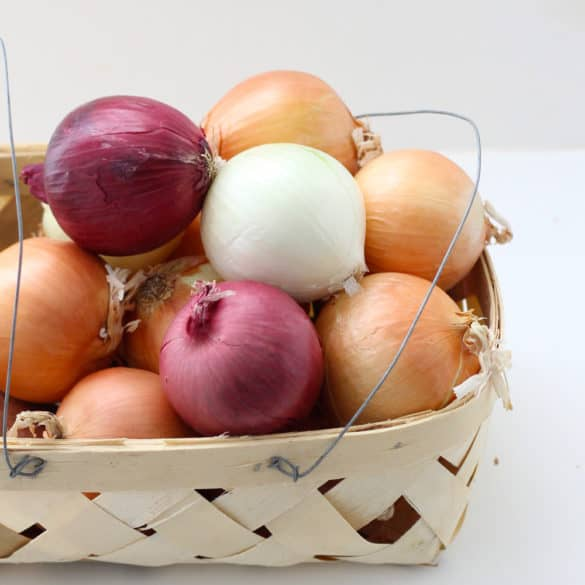 Veggies All Year: Onions from Living Well Kitchen