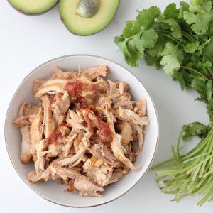 Salsa Chicken